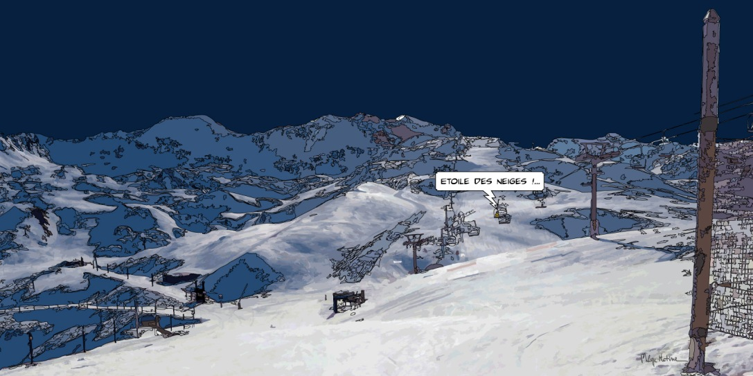 Etoile des neiges -- Medium 100x50 229€ // Large 160x80 479€