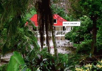 Jungle -- Medium 100x70 259€ // Large 140x100 429€